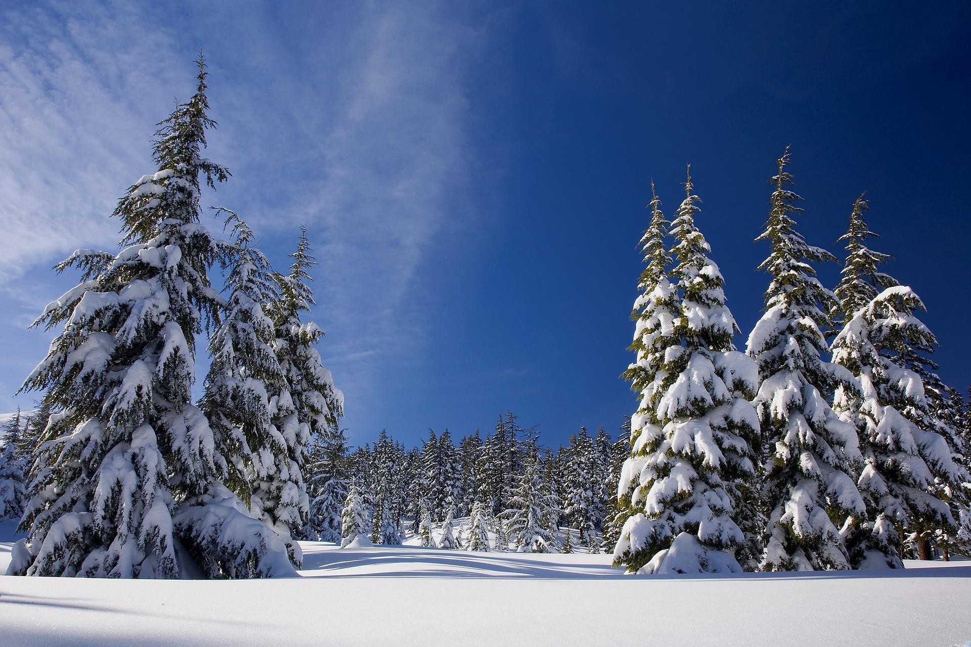 遮熱カーテン冬